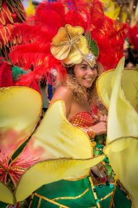 WR1 Derby Caribbean Carnival 2017 032